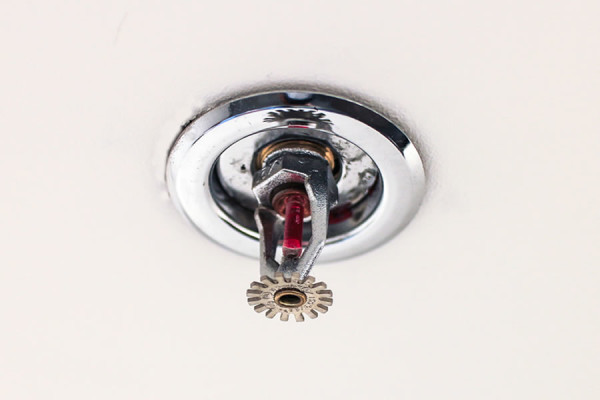 Sprinkler Systems installation on the Sunshine Coast